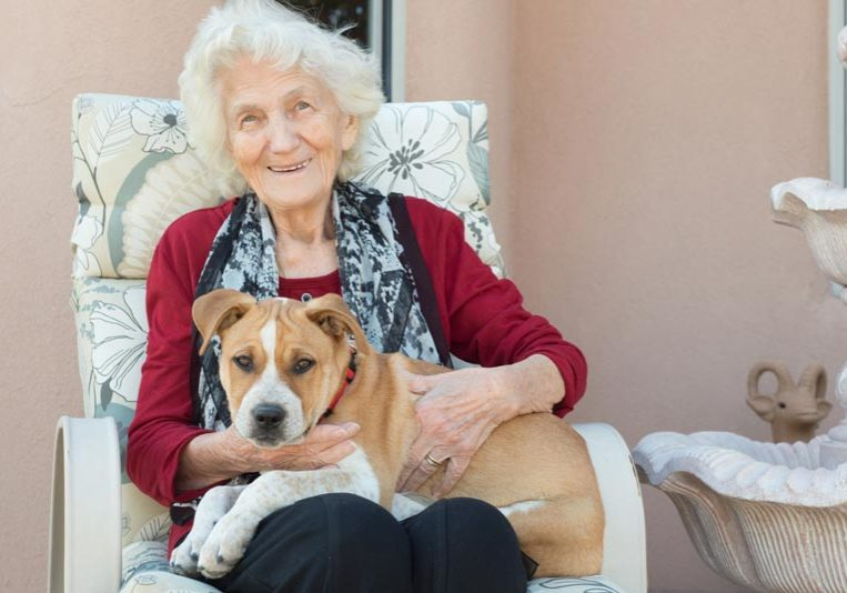how-dogs-are-helping-those-in-aged-care